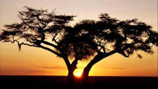 Musica Africana - Ndive Muroyi