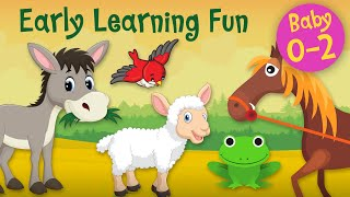 Early Learning Fun #11 | Animal Sounds 2 🐷🐴🐑 Educational Series