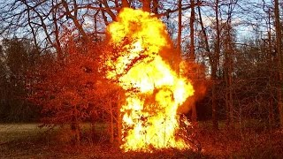 Messing With Hunters, Trespassers, Poachers! Burn Baby Burn! DIY Fire & Ozzy !