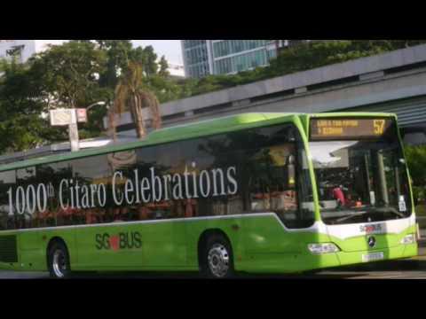 Singapore Buses Photo Showcase 2016