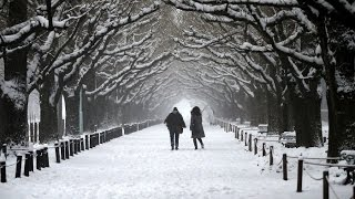 Tokyo wakes up to first November snow in over 50 years || Winter 2016