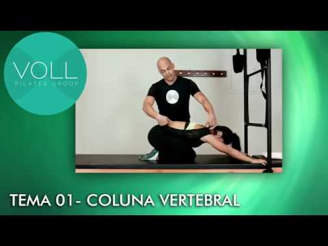 CLIENTE - VOLL PILATES GROUP