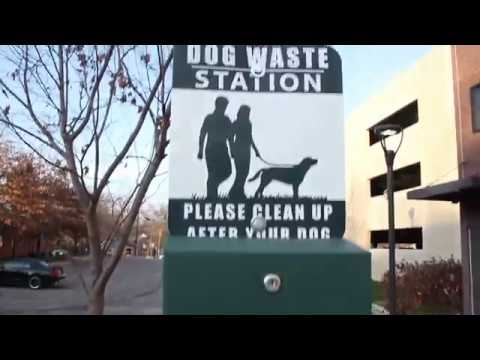 PET WASTE (VIDEO ONE) - PSA 2019 - City of Columbia Missouri - Office of  Sustainability