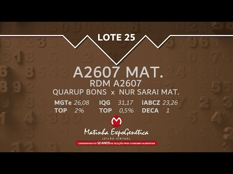 LOTE 25 MATINHA EXPOGENÉTICA 2021