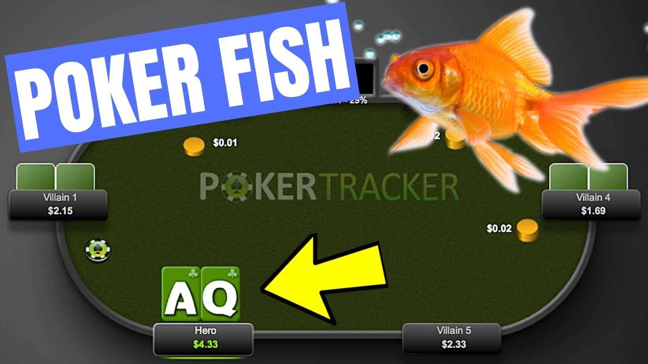 3betting aquariums betting profit and loss spreadsheet