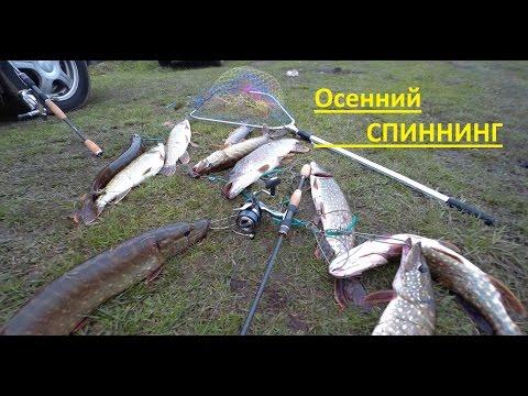 о рыбалке получи и распишись щуку братск
