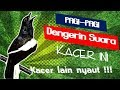 Pancingan Kacer Pagi Siang Sore Malam  Mp3 - Mp4 Download