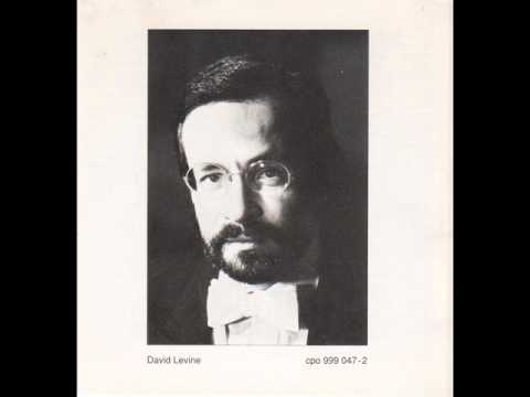 DAVID LEVINE plays SCHUBERT Sonate D Dur D 850 1
