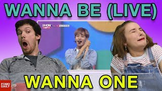 "Video Wanna One ""Wanna Be (My Baby) on Show Champion"" • Fomo Daily Reacts download MP3, 3GP, MP4, WEBM, AVI, FLV Desember 2017"