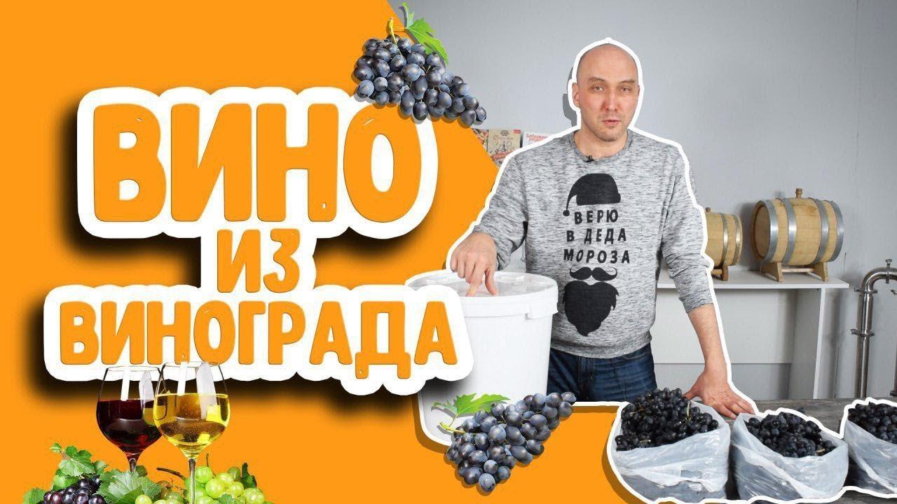 Как сделать домашнее вино из винограда? Простой рецепт вина в домашних условиях!