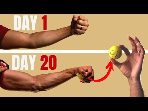 How To Get Your Veins To Show   Get Vascular Arms In Less Than 20 Days