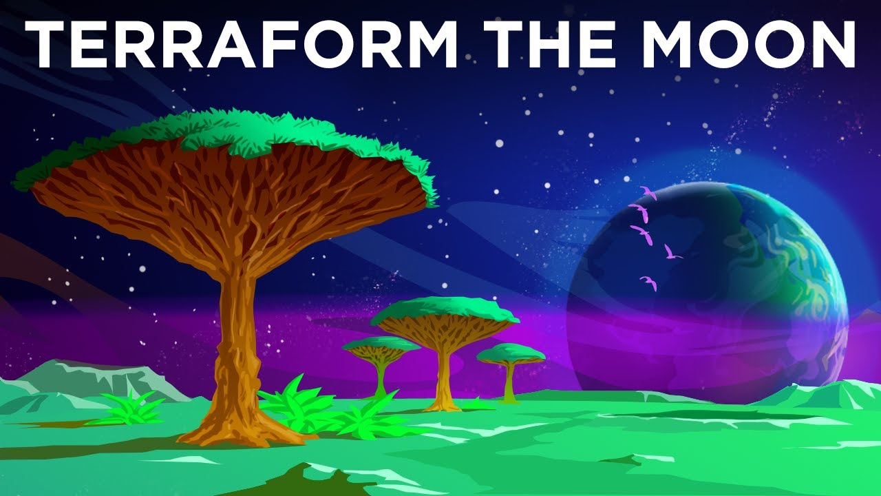 Download What If We Terraformed The Moon?