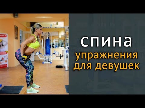 Как накачать спину девушкам в тренажерном зале: 5 упражнений на спину
