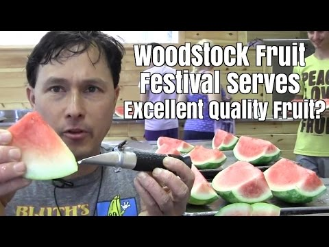 Does the Woodstock Fruit Festival Serve Excellent Quality Fruit to Attendees ?