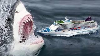 दुनिया की सबसे बड़ी शार्क || Largest Shark in the world [ Megalodon ] in Hind