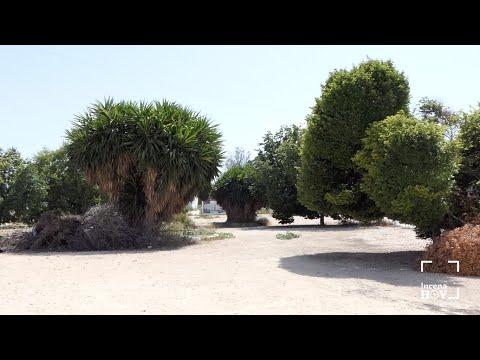 VÍDEO: Presentado el proyecto de la nueva zona verde de Huerta del Carmen, que sale a licitación en unos días