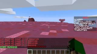 Minecraft Minigame Gameplay.