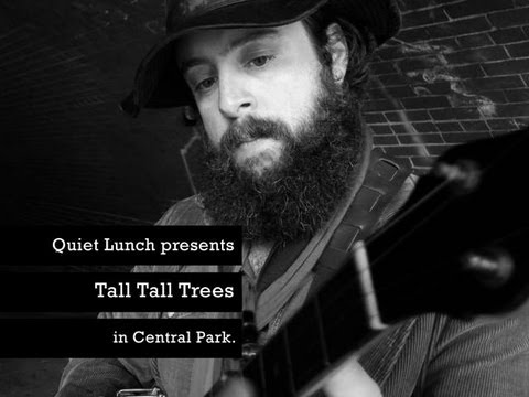 QUIET LUNCH MAGAZINE | Tall Tall Trees.