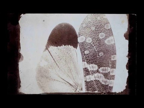 Wlliam Henry Fox Talbot and the Invention of Photography
