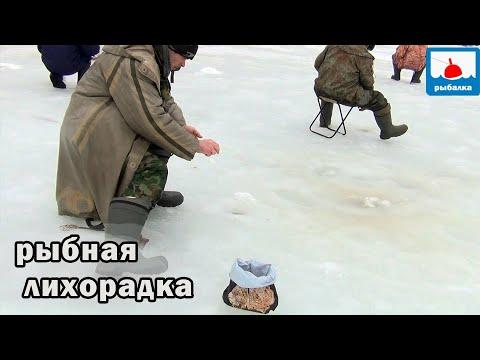 Рыба не даёт опустить мормышку! Вот это клёв! Отличие рыбаков рыбных мест от  рыбаков малорыбных