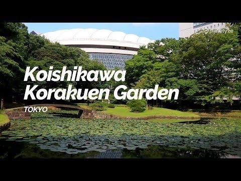 Koishikawa Korakuen Garden, Tokyo | Japan Travel Guide