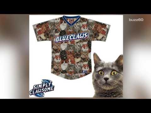 "Minor League Baseball Team Wears ""Cat Uniforms"" For a Good Cause"