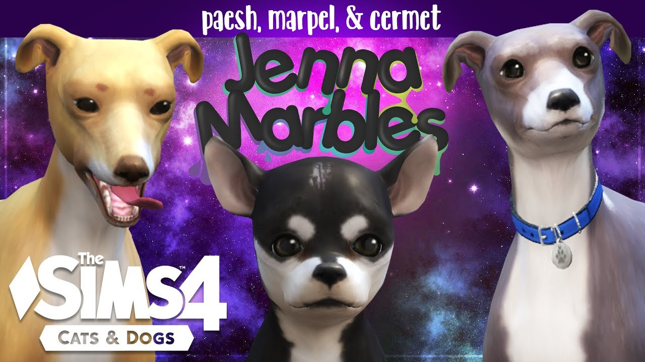 paesh cermet marpel creating jenna marbles dogs in the sims 4