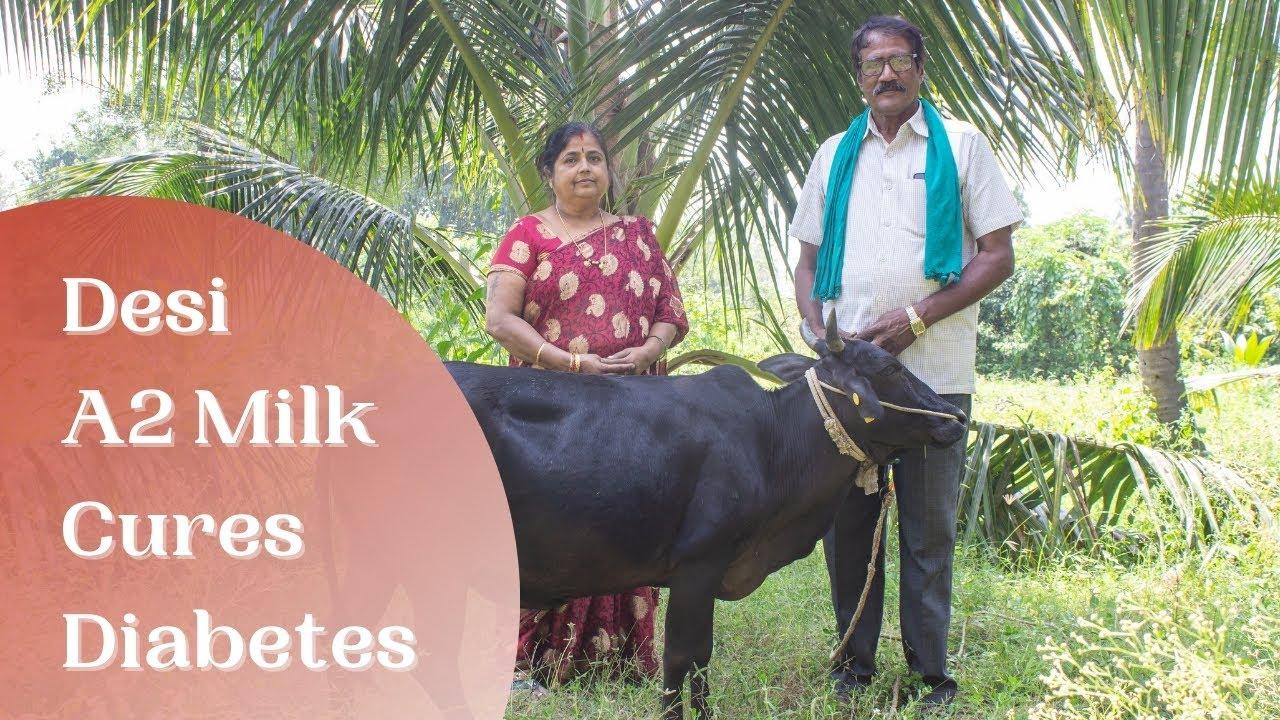 ದೇಸಿ ಹಸುವಿನ ಹಾಲನ್ನು ಬಳಸಿ ಮಧುಮೇಹ ನಿವಾರಿಸಿಕೊಳ್ಳಿ!! [Consume Desi A2 Milk to Cure Diabetes]