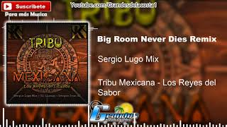 1.- Big Room Never Dies Remix (Tribal Bootleg) Sergio Lugo Mix 🎵((🎧 Tribu Mexicana 🎧))🎵 - 2018