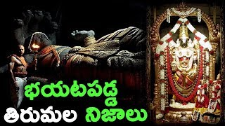 భయటపడ్డ తిరుపతి నిజాలు || Unknown Facts About TIRUMALA Revealed in Telugu || Interesting Facts