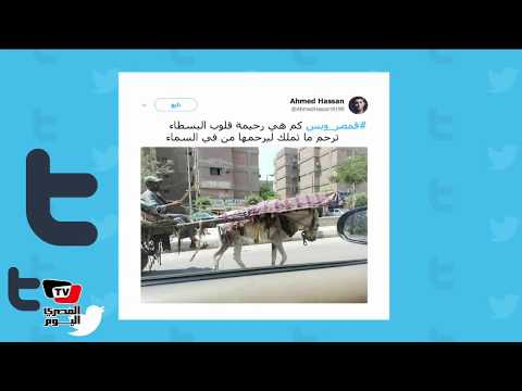 هاشتاج «في مصر وبس» يتصدر تويتر.. ومغرد: «كم هي رحيمة قلوب البسطاء»  - نشر قبل 19 ساعة