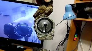 Камеры видеонаблюдения в квартире