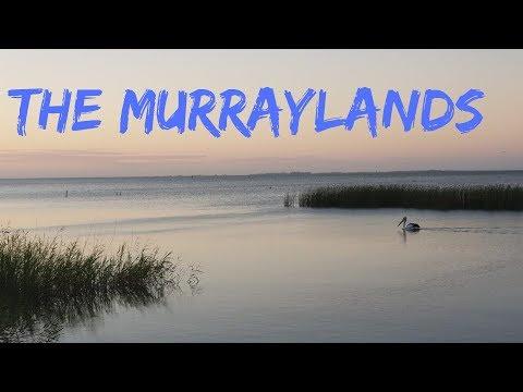 Meningie, Tailem Bend & The Murraylands: S02 South Australia E03 Lap Of Australia