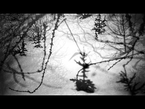 Jean-Louis Murat - La Chanson du Cavalier (teaser)