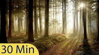30 Minute Sleep Music: Relaxing Music, Meditation Music, Calming Music, Soothing Music ☯077B