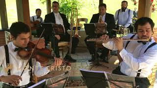 Baixar Meu Tributo - Instrumental | Monte Cristo Coral e Orquestra | Músicos Para Casamentos