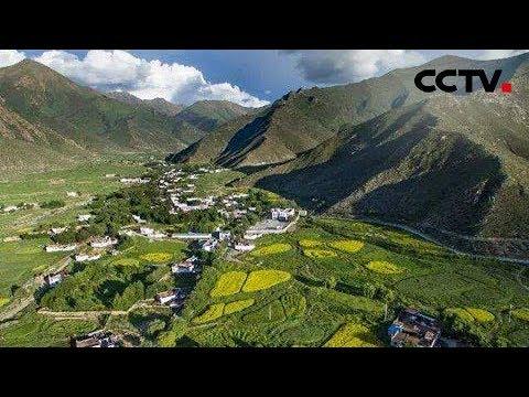 [世界看两会] 阿联酋《经济学人》编辑主任郭达文:中国用实际行动推动生态文明建设 | CCTV