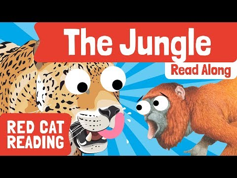 The Jungle | How to read | Fun Facts for Kids | Made by Red Cat Reading