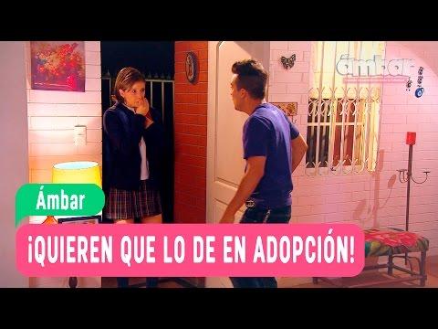 Ámbar - ¡Quieren que lo de en adopción! - Anita y Mateo / Capítulo 116