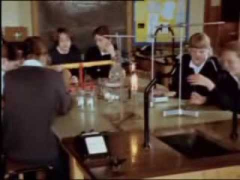 Iepuraș coconaș - Cântece pentru copii | TraLaLa - YouTube