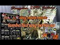 Kicaumania Antusias Kicau Mania Meramaikan Gelaran Ronggolawe Dpc Jembrana  Tembus  Peserta  Mp3 - Mp4 Download
