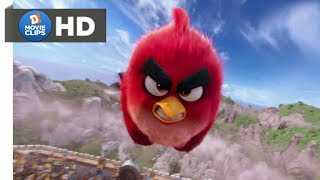 The Angry Birds Movie Hindi (11/14) Red Flies Scene MovieClips