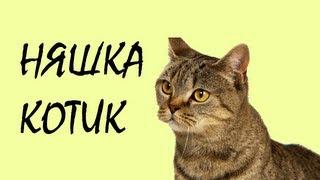 Обзор модов #112 Няшка-котик!