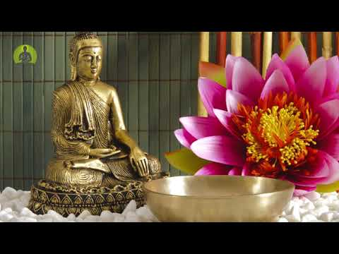 1 Hour Peaceful Meditation Music, Healing Music, Positive Energy, Calming Inner Peace Music