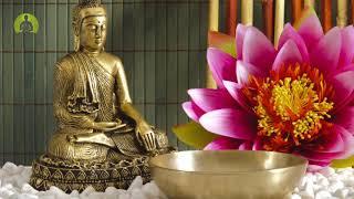1 Hour Peaceful Meditation Music, Healing Music, Positive Energy, Calming Inner Peace Music