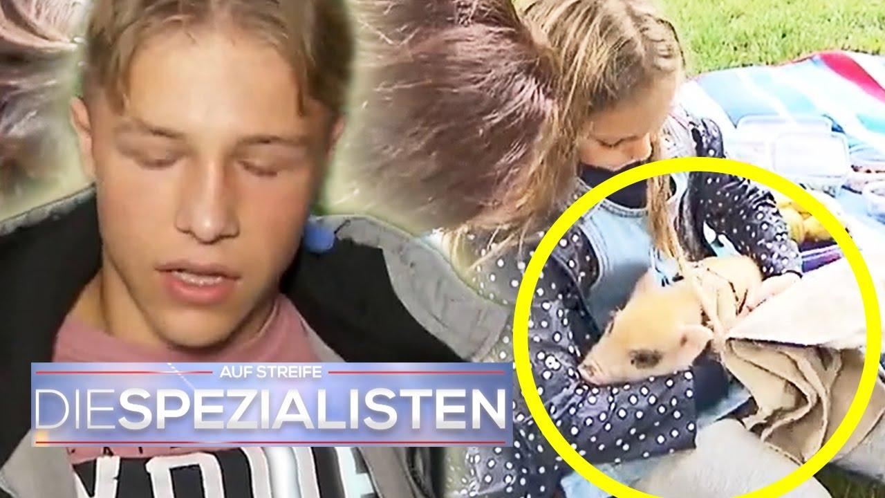 Mias (8) Ferkel vergiftet ihre Brüder!   1/2   Die Spezialisten   SAT.1