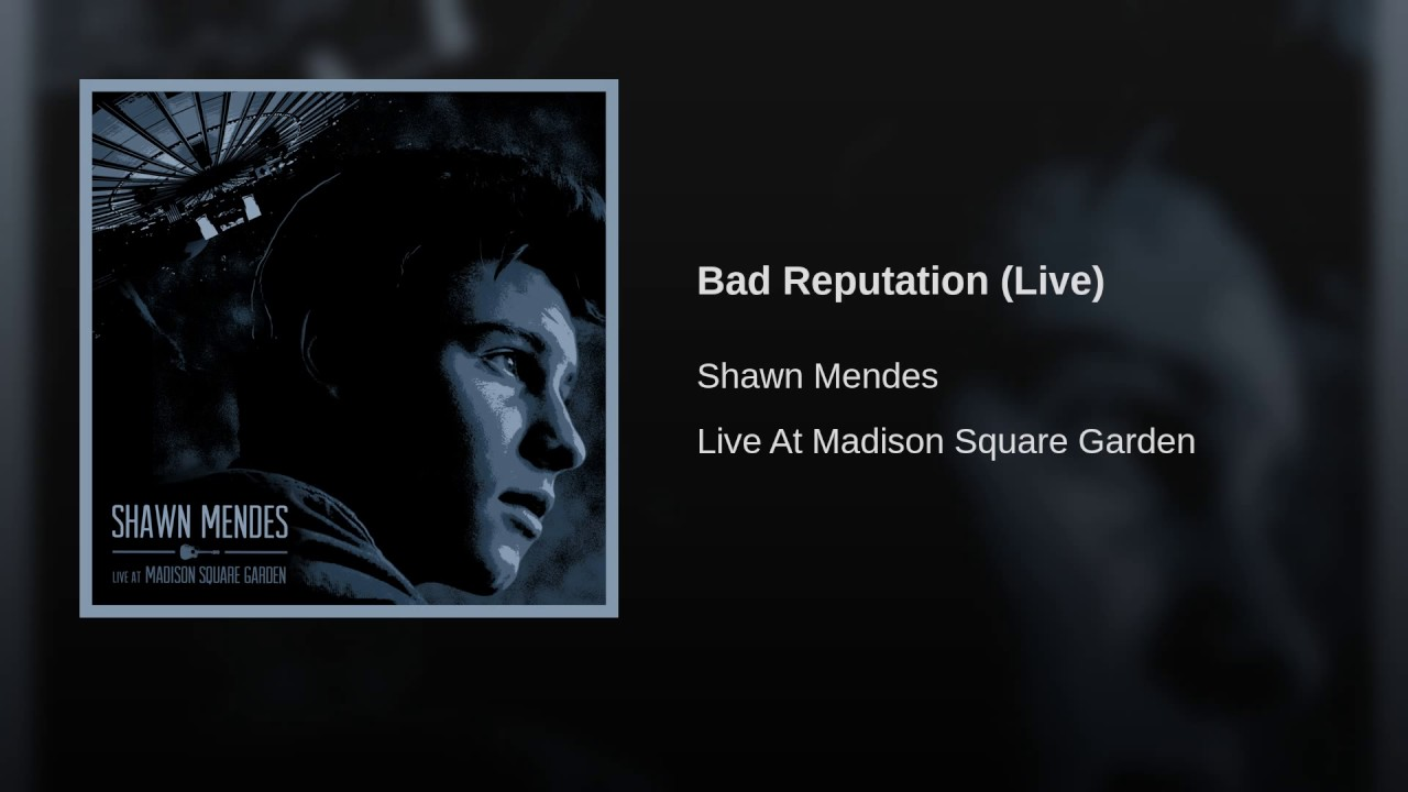 Bad reputation live youtube for Shawn mendes live at madison square garden