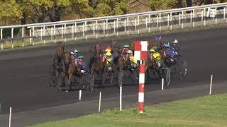 Vidéo de la course PMU PRIX DE NARBONNE