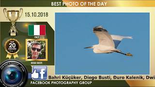 TOP 20 PHOTOGRAPHY VIDEO AWARD 15.10.18 | PHOTOGRAPHY PHOTOS AWARDS | SUNSET PHOTOGRAPHY AWARDS