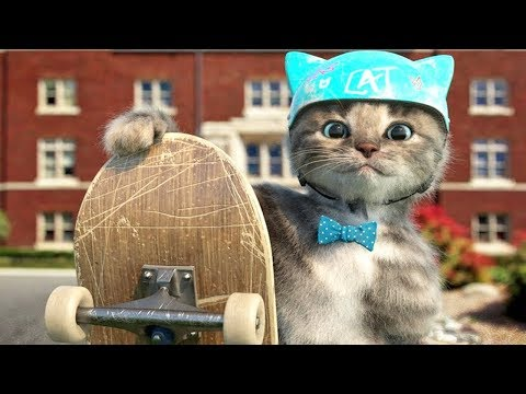 Little Kitten Preschool - Early learning for children - Cute Kitten Animation Games For Kids